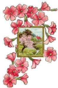 flower-drawings-6