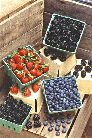 berries_large