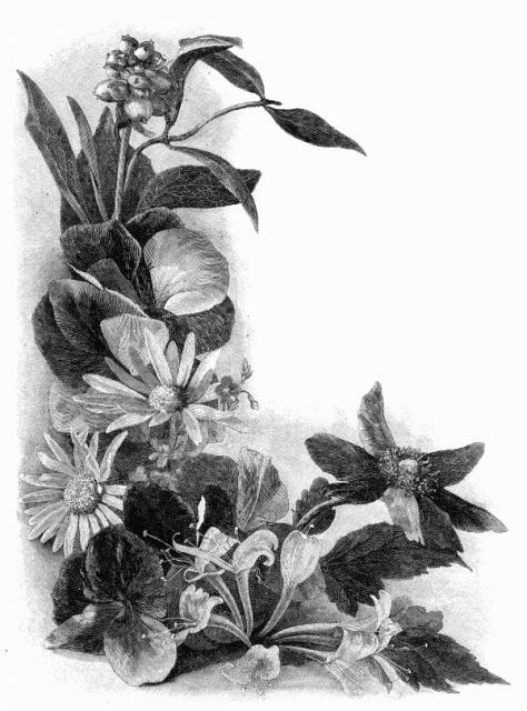bw-flowers-43