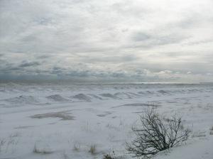 Feb-2-2011 001