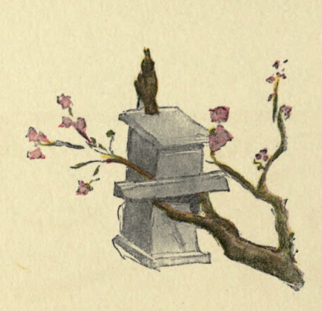 bird-on-house