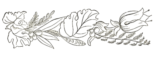 flowers-ferns