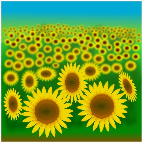 sunflower_field
