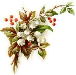 christmas-lily-of-valley.jpg