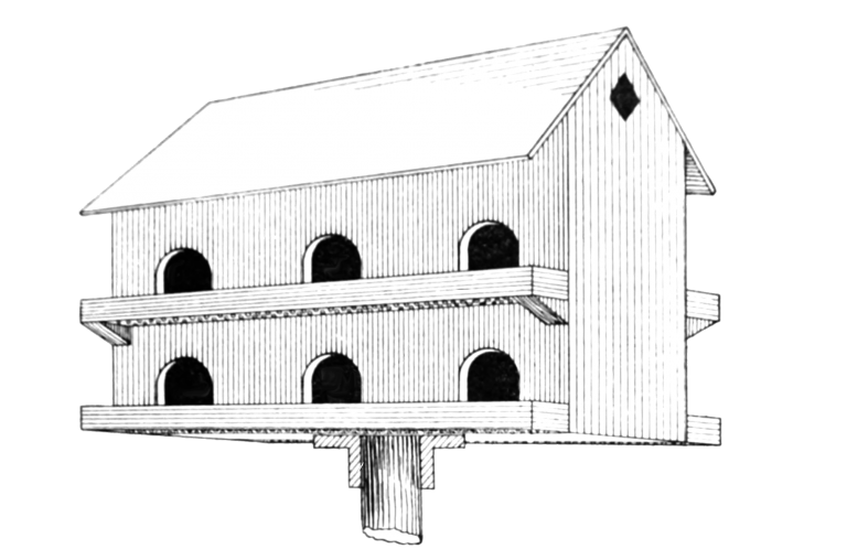 barn-birdhouse-drawing-768x508