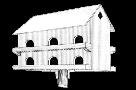 barn-birdhouse-drawing-768x508