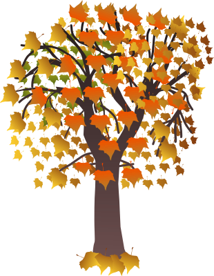 maple_tree_autumn